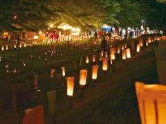 Sakado Bamboo Lantern Night festival