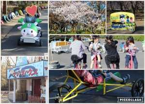 Unusual bikes and sakura SL | FUKAYA
