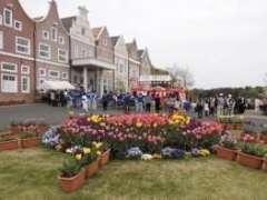 ooka flower festival