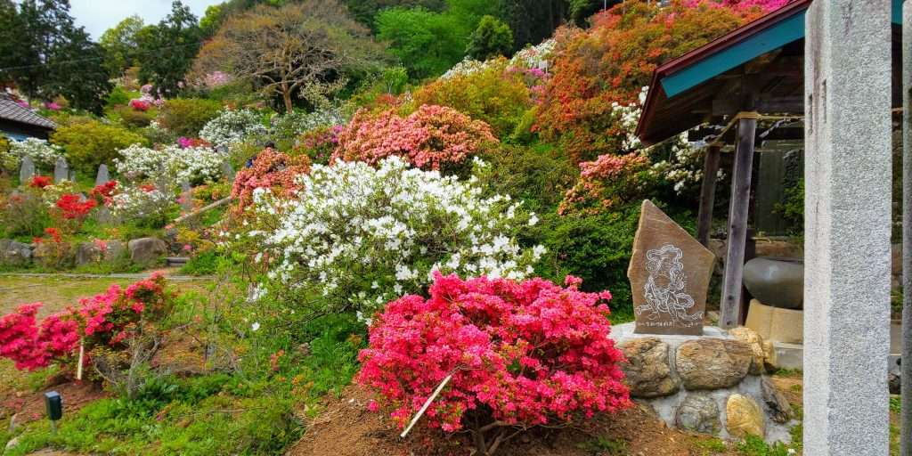 Stone plaques along the walkways for the 88 Kannon at Godaison Azalea Park in Ogose