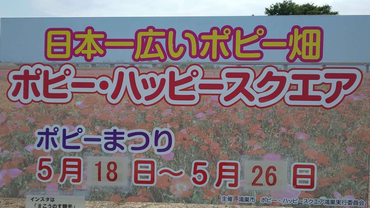 Kounosu Poppy Festival - largest in Japan