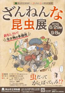 Unfortunate Insects Exhibition Sayama Municipal museum summer 2019