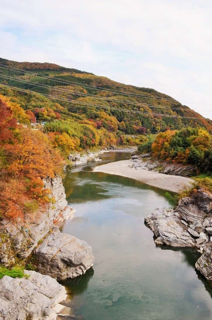 Nagatoro Autumn leaves