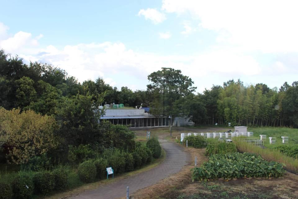 CESS eco garden