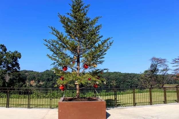 Metsa Christmas tree