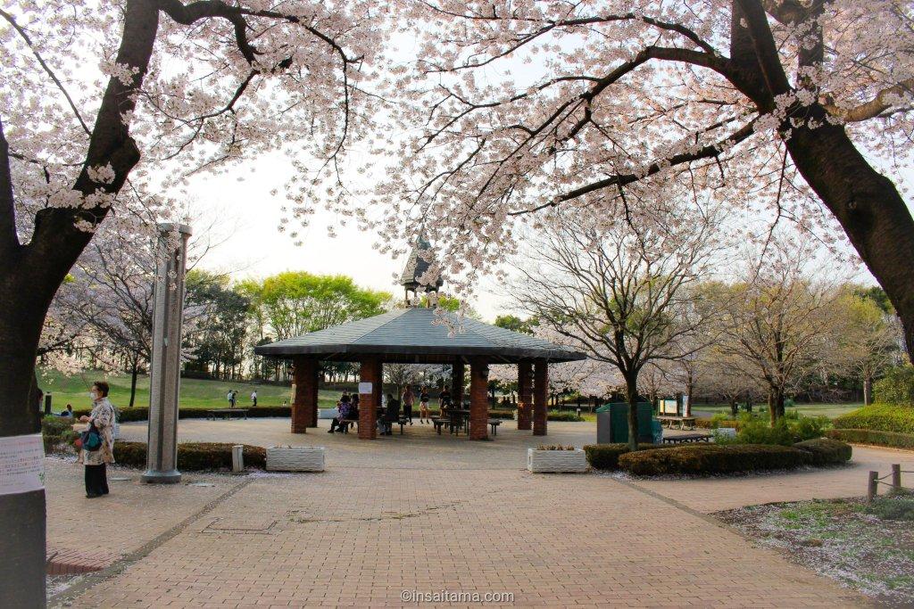 Pagoda at Fukaya Green Park