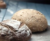 Ekmeğin Emekçisi Mayalar