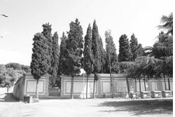 immagine-cimiterosantantonio_0.jpg?fit=250%2C167&ssl=1