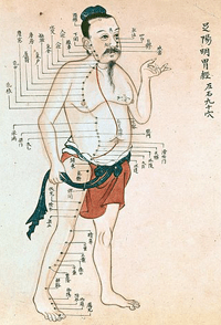 Acupuncture chart with a series of points indicated