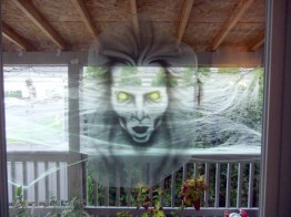 What you see going in or out the screen door.