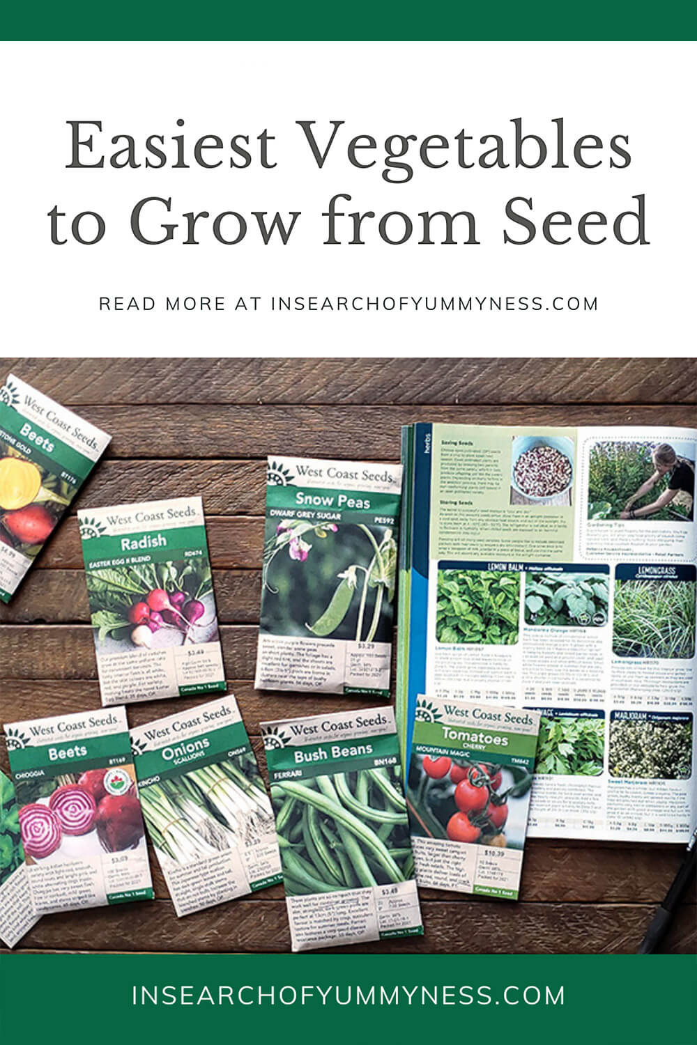 Easiest Vegetables To Grow From Seed In Search Of Yummy Ness