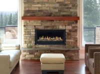 Montigo P52DF Direct Vent Gas Fireplace  InSeason