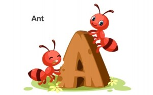Против мравки 4