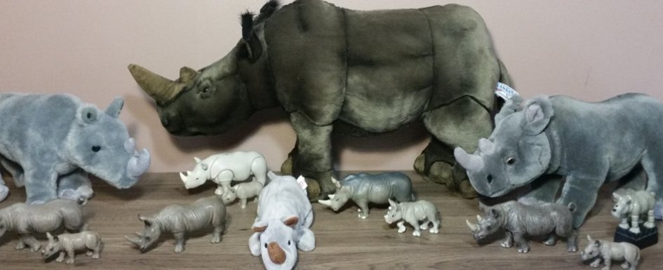 Rhino collection