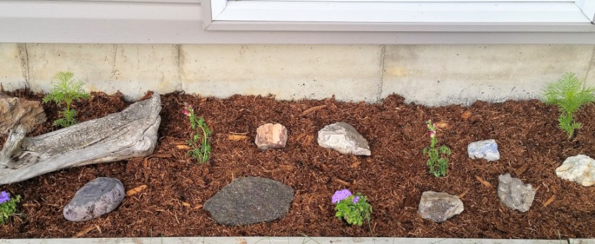 Garden update June 2019: The front garden planted with various flowers and decorative rocks.