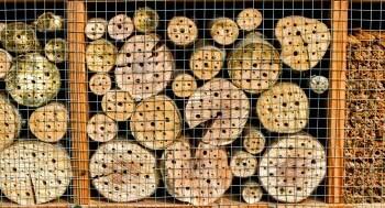 Insektenhotel mit Draht schützen