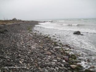Der Strand nordöstlich von Busene Have auf Møn