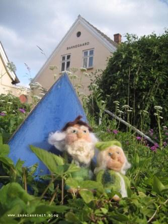 Glaubst du, dass viele Gäste zur Sankt-Hans-Feier kommen?