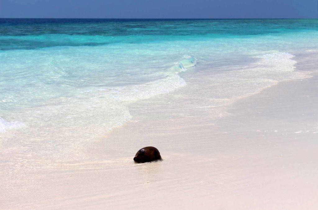 Malediven Strand Strände