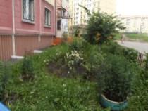 Рокоссовского 19