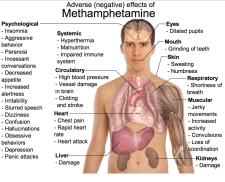 Meth Effects