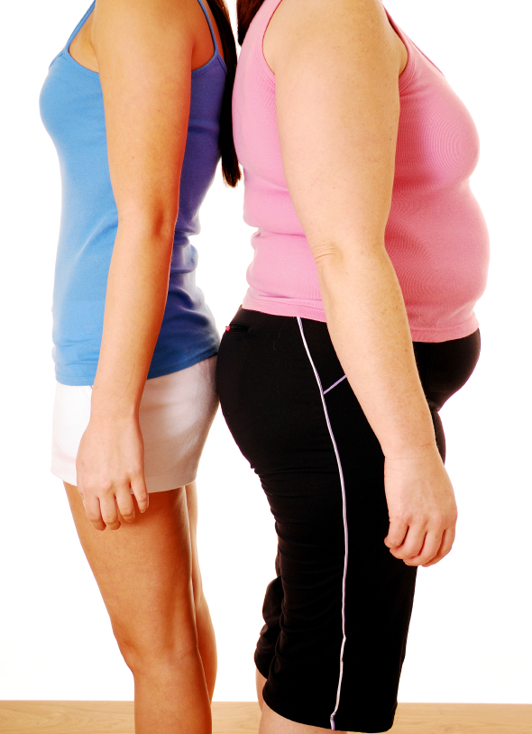 Diet, Exercise and Stable Hormones Reduce Belly Fat