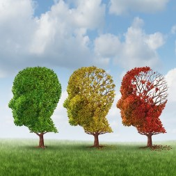 Overcome Alzheimer's challenges by understanding the illness