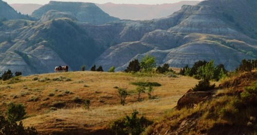 Die Badlands in North Dakota. - Foto: ND Tourism