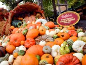 Herbstdekoration in Dolly Partons Themenpark Dollywood in Pigeon Forge. - Foto: Tennessee Tourism