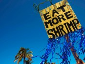 Das Shrimp Festival in Fort Myers ist soetwas wie das Mekka für Shrimpfans. - Foto: The Beaches of Fort Myers & Sanibel