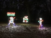 Festival of Lights in Rockford. - Foto: Holiday Festival of Lights Committee