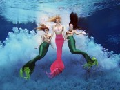 Weeki Wachee Mermaids. - Foto: Peter W. Cross und Patrick Farrell