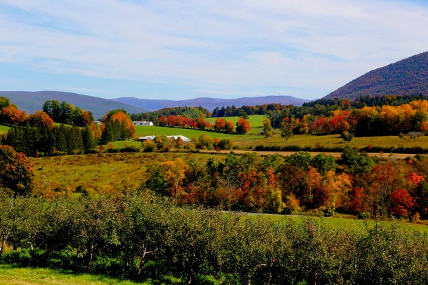 Indian Summer in den Berkshires. - Foto: Ogden Gigli/Massachusetts Office of Travel and Tourism