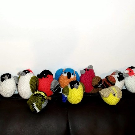 Crochet 12 british birds