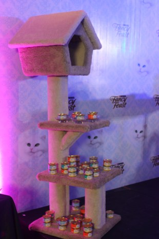 This cat condo was the grand prize, on whoever gets the most likes on Instagram.