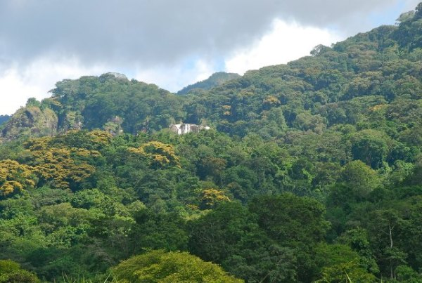 Udzungwa Mountains