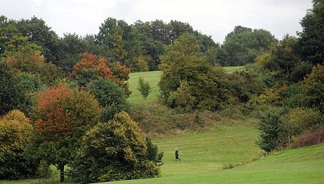 Croydon's verdant open spaces, such as Lloyd Park, may not be getting the care and attention from council contractors that residents might expect