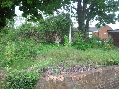 """Work to be done: the """"green"""" area in Birdhurst Avenue, before the neighbours got to work to turn it into a worthwhile garden"""