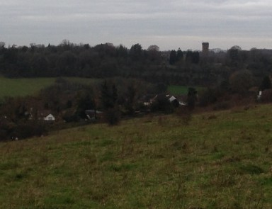 The Cane Hill site, as seen from across the valley from Farthing Downs. This is not a built-up area
