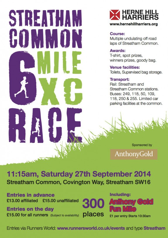Streatham Common 6 mile race