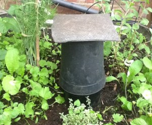 A simple, home-made wormery can help to keep a raised beds soil with soil that provides lots of healthy plants