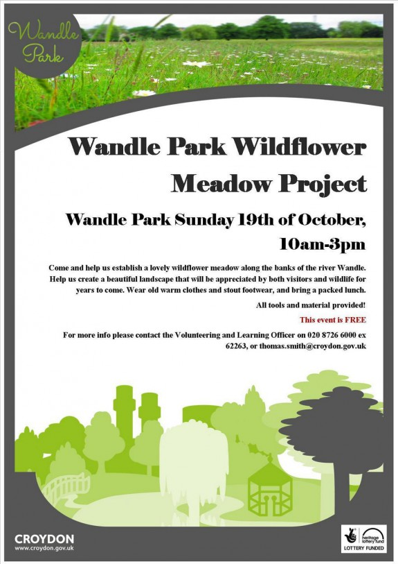 Wandle Park project