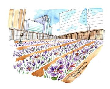 How the central Croydon crocus fam might look, as imagined by local artist Lis Watkins