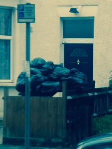 One household's rubbish destined for landfill, at least once it gets collected
