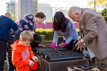 Volunteers of all ages played a part in the crocus planting. Help is now needed for harvesting. Photography by Lee Townsend
