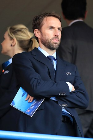 Gareth Southgate: well-suited to the FA