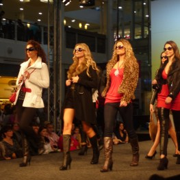 Can you help out at a charity fashion show in Purley?