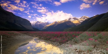 Gratis Parks Canada Discovery Pass