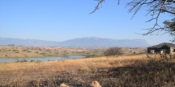 Trip introductie – Zuid-Afrika een must op de bucketlist!