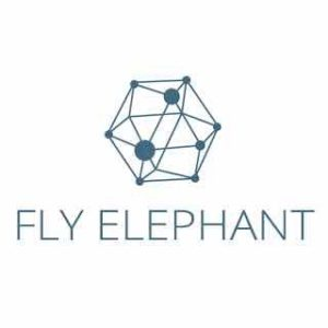 FlyElephant Collaborates with HPC-HUB for High Performance